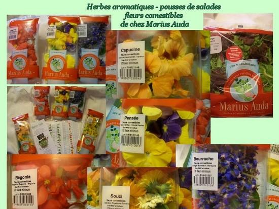 Cuisine en folie quiche corse aux herbes et salade de fleurs for Ou acheter des fleurs