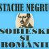 "Rezumat ""Sobieski si românii"" de Constantin Negruzzi - 3 rezumate"