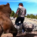Mountain Climber Saved an Abandoned Grizzly Cub. Six Years Later This Is How He's Thanked!