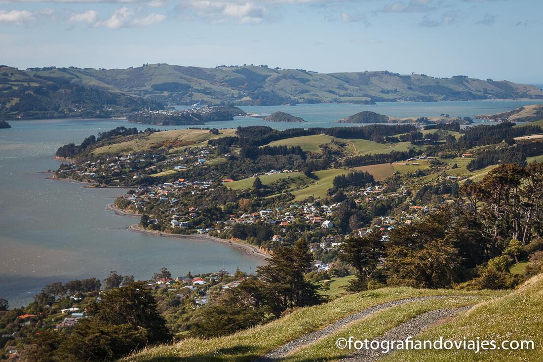 Península de Otago