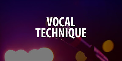 The Vocal Technique and the Organ of the Human Voice to Sing - Music Writee