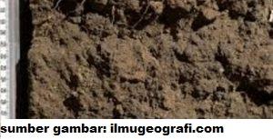 karakteristik tanah andosol. tanah andosol