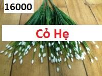 Phu kien hoa pha le tai My Dinh 2
