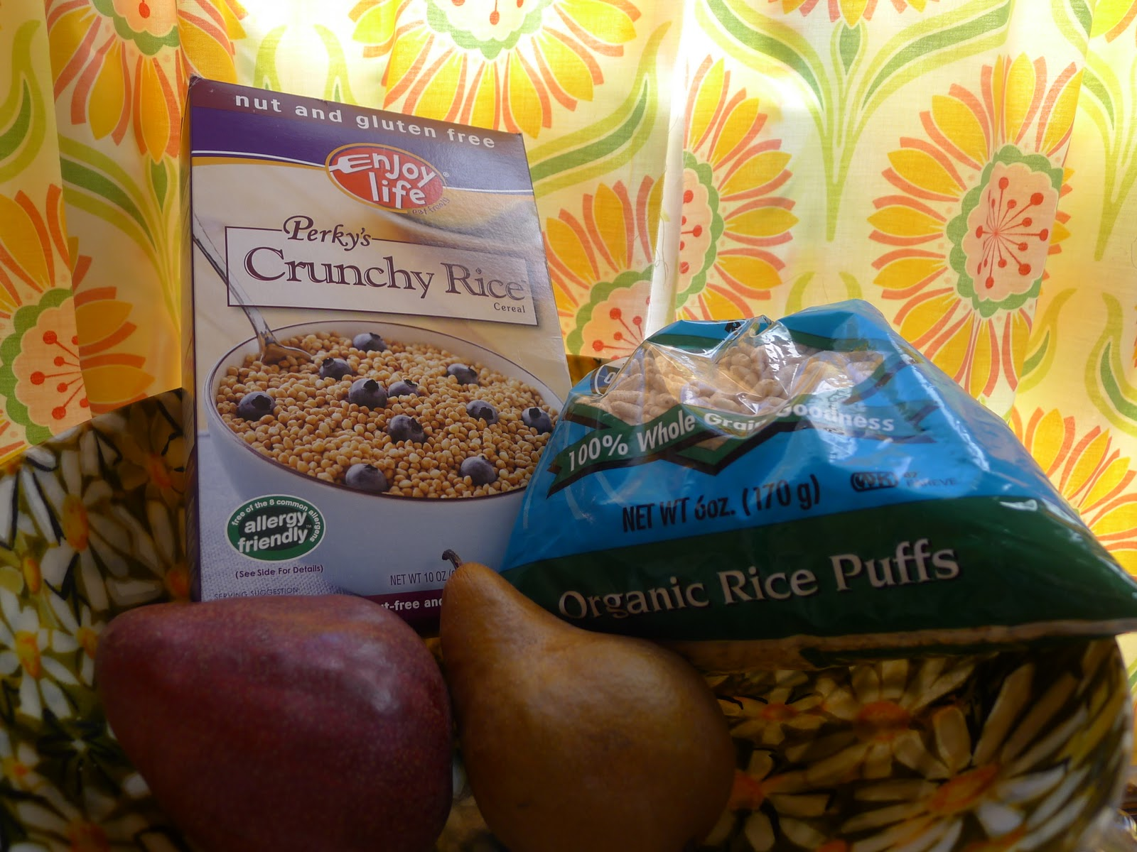 total elimination diet recipes to keep you sane rice shine