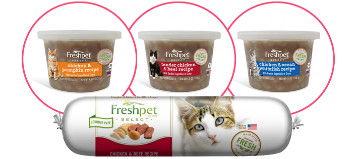 Review Of Fresh Pet Cat Loaf Food