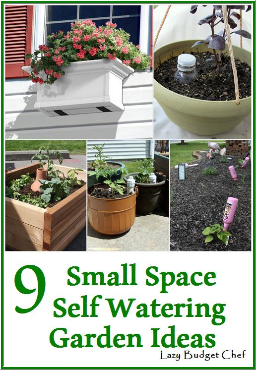 Lazy Budget Chef: 9 Small Space Self Watering Vegetable Garden Ideas ...