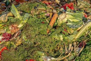 Peluang Usaha Pupuk Kompos dan Organik