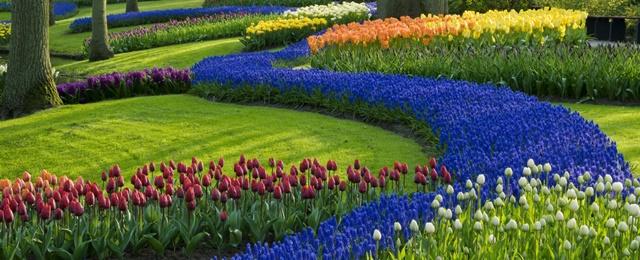 Vários estilos de jardins