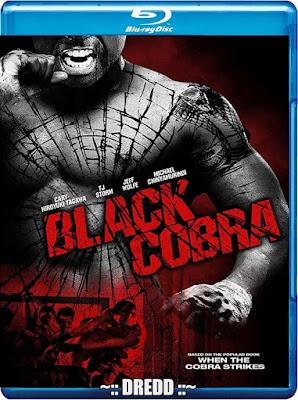 Black Cobra 2012 Dual Audio BRRip 480p 300Mb x264