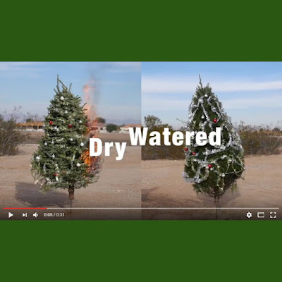 Screenshot of Queen Creek Fire and Medical Department holiday safety YouTube video with green borders
