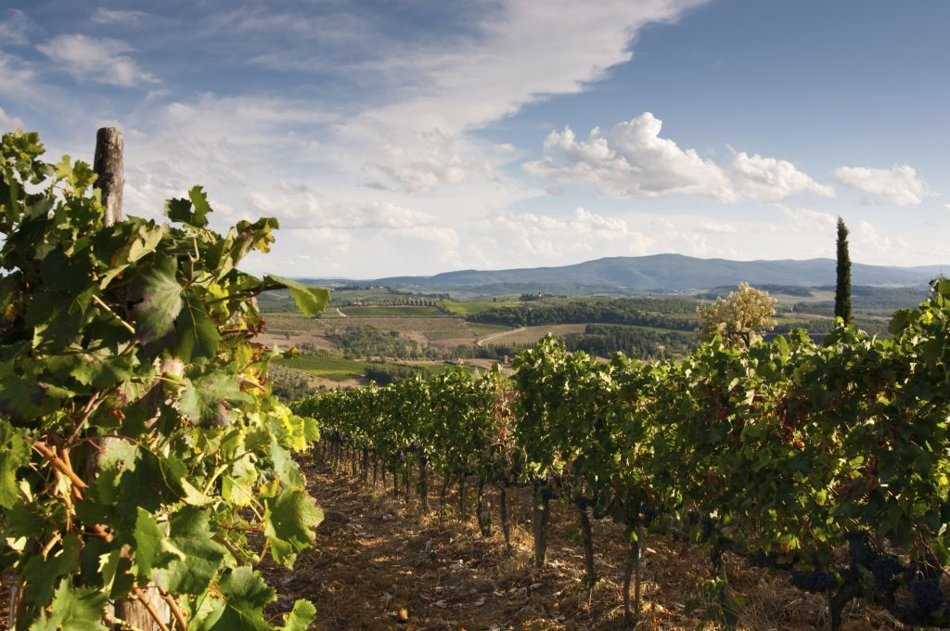 World at a Glance: The world's top 10 wine destinations