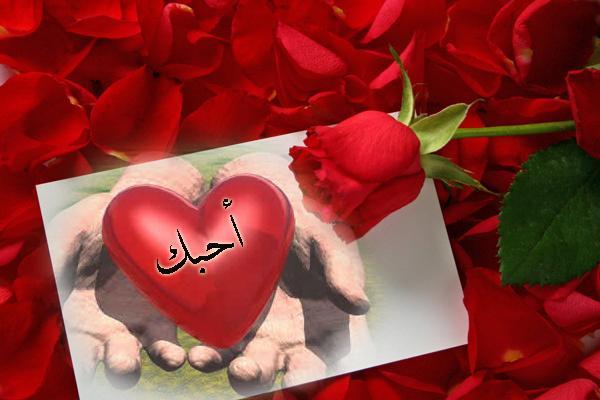 ميزان العدل على الأرض حواري عميق أبو أنس اليك حبيبتي احبك