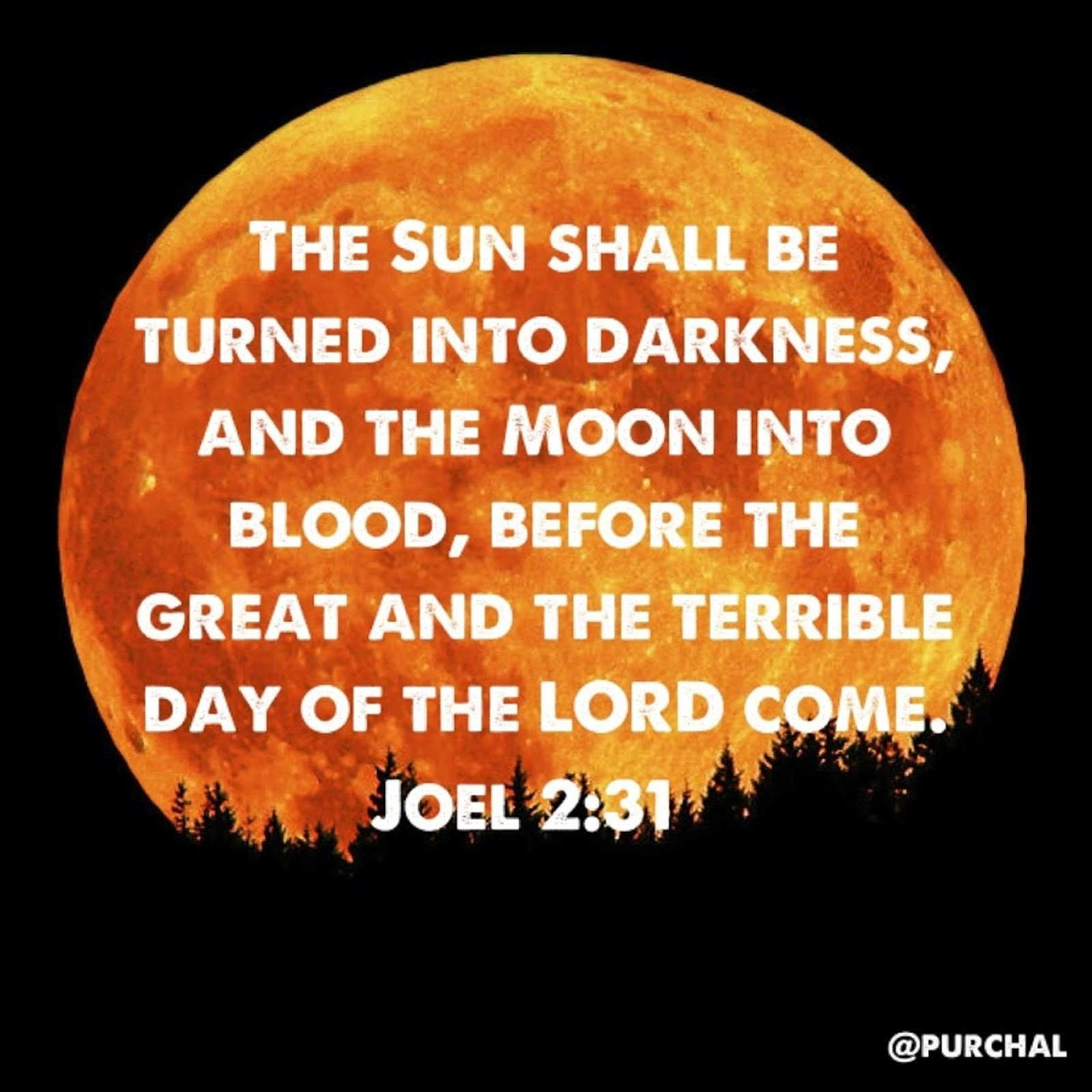 THE SUN WILL BE TURNED INTO DARKNESS AD THE MOON INTO BLOOD BEFORE THE GREAT AND TERRIBLE DAY OF