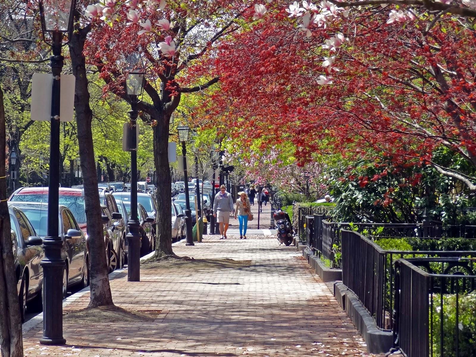 Joes Retirement Blog Around The Back Bay Boston