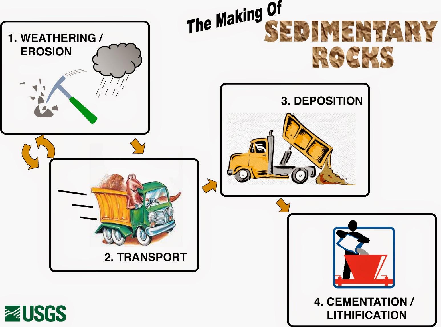 Sedimentary Rocks And Processes