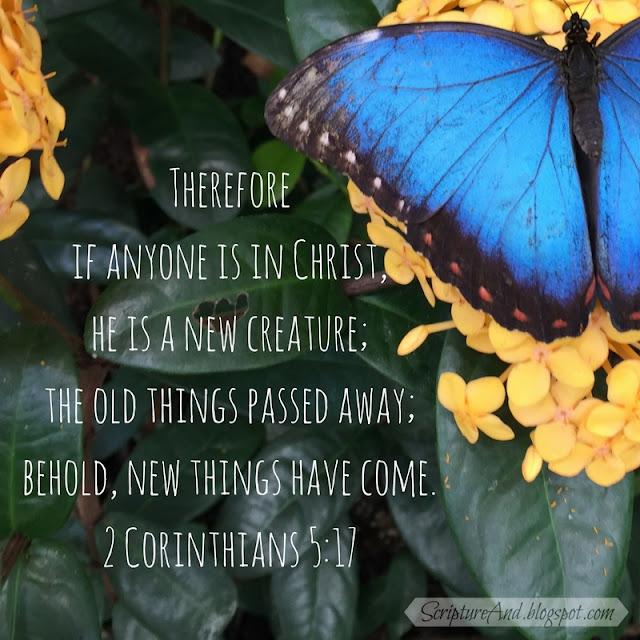 2 Corinthians 5 :17 New creature | scriptureand.blogspot.com