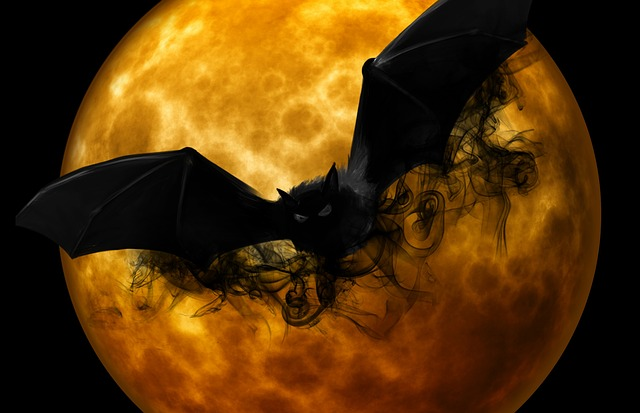 halloween, morcego, lua cheia, full moon, moon, scary