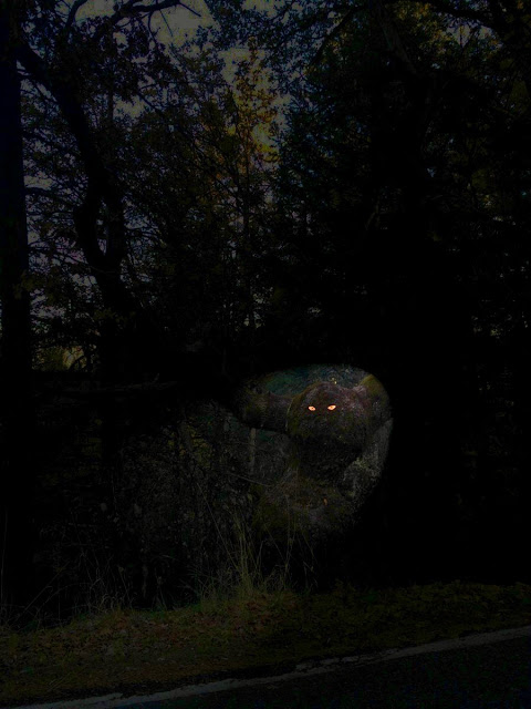Eyebombing, stick googly eyes on things. Glow in the dark eyes on trees. 13