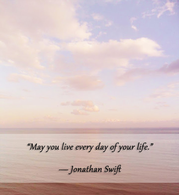 Quote By Jonathan Swift - Photo By Pascale De Groof