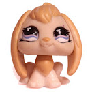 Littlest Pet Shop Collectible Pets Rabbit (#542) Pet