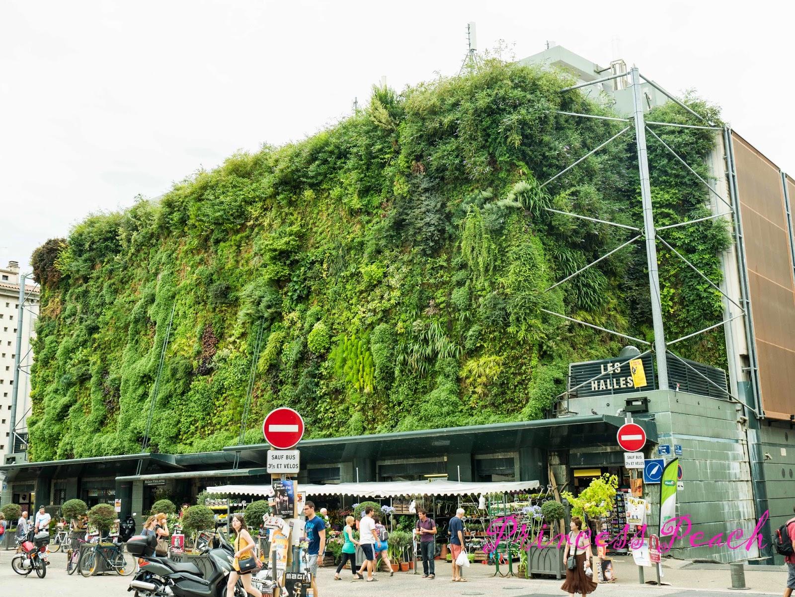亞維儂傳統市集-Les-Halles-外觀