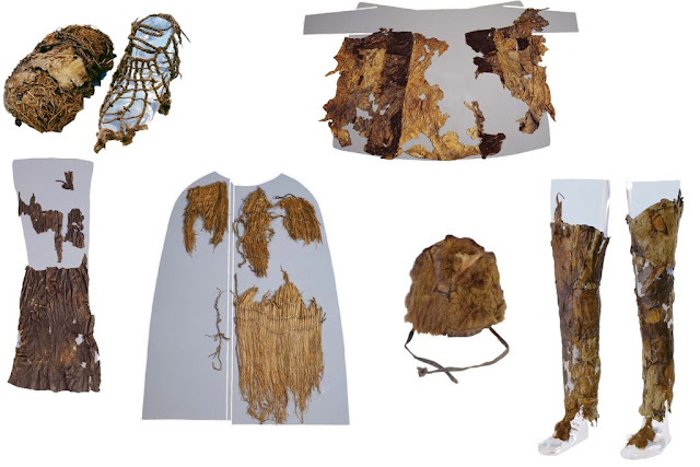 DNA traces origins of Iceman's wardrobe