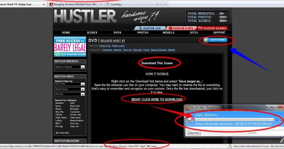hustler barely legal passwort benutzer