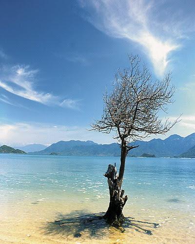 Thơ với biển Nha Trang