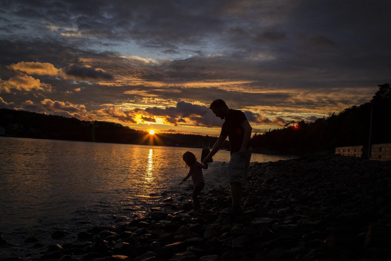 Drie mooie boeken over vaders voor vaderdag