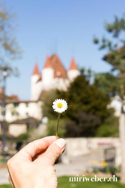 Schloss Thun, Thun,  Schweizer LittleCITY Guide, Heimat, Schweizer Stadt im Berner Oberland