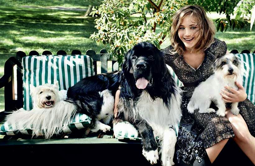 Jennifer Lawrence with Pets Wallpaper
