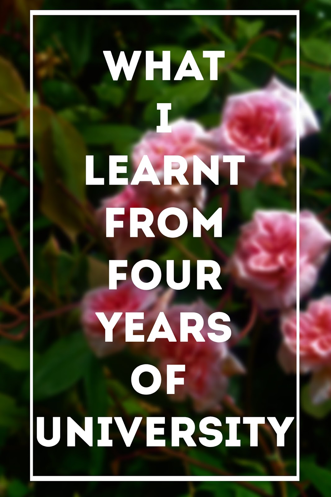 What I Learnt From Four Years of University