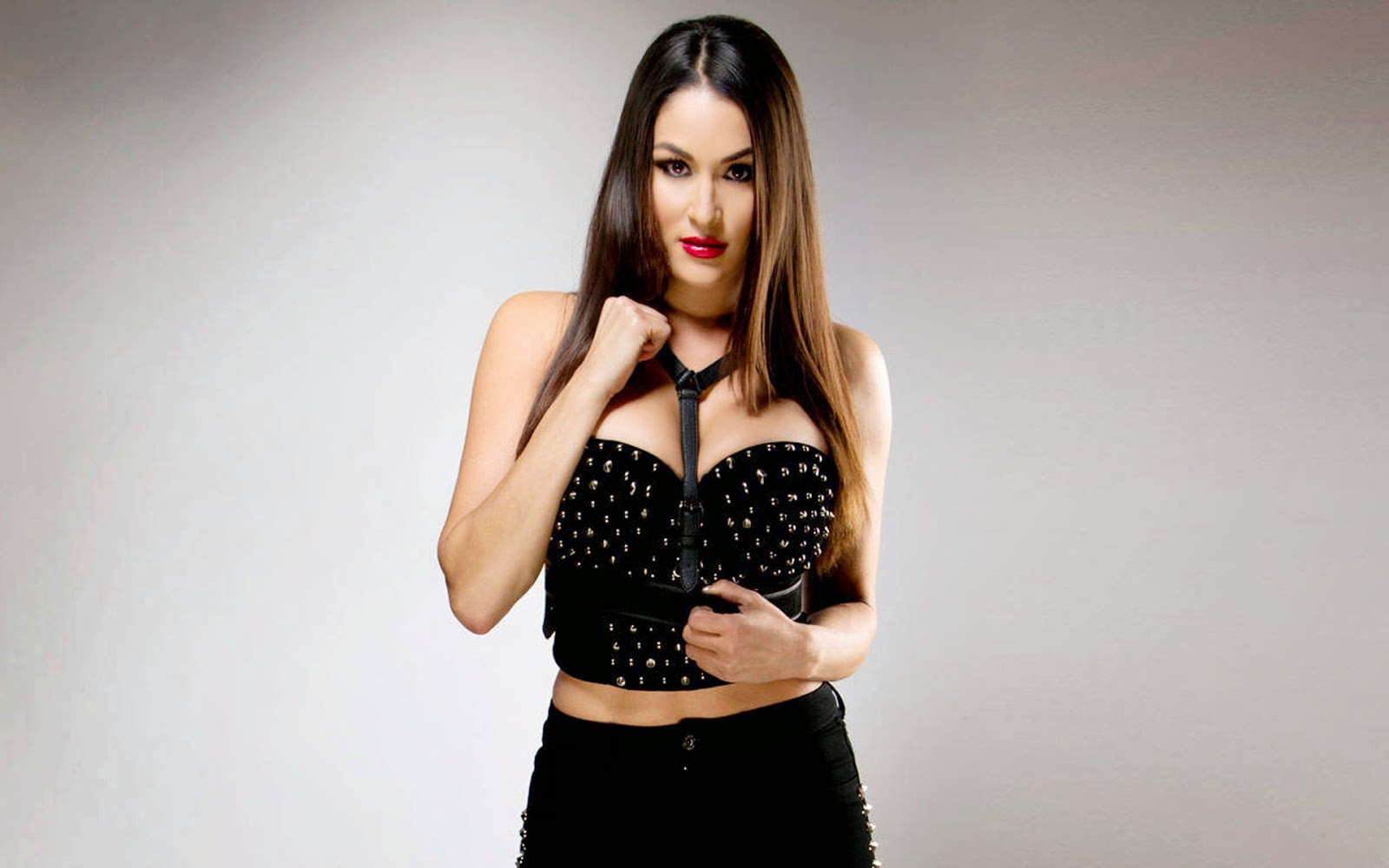 Wwe Divas Images And Latest Sports News Nikki Bella High
