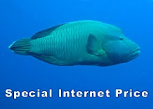 Special Internet Price