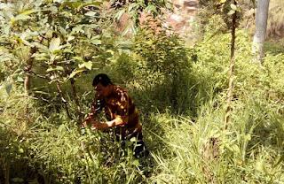 Pemerintah Akan Selesaikan Masalah Tanah Menganggur