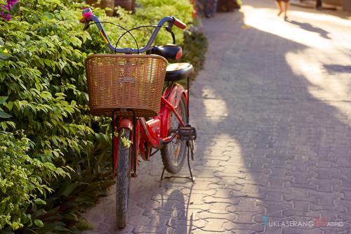 Ko Phi Phi transportation