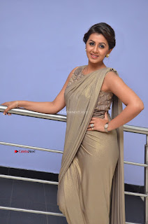 Nikki Galrani in Saree 004.JPG