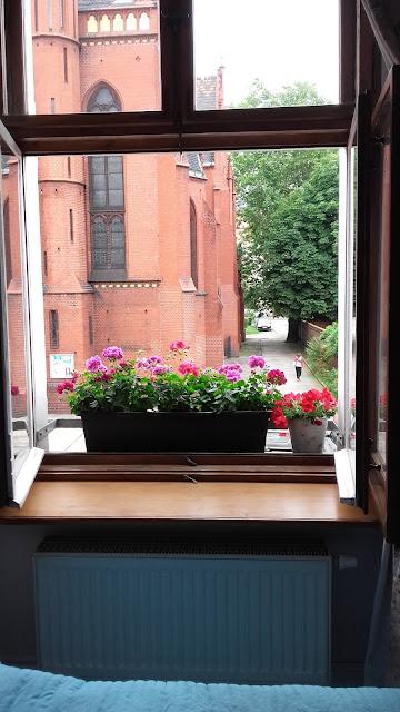 okna skrzynkowe stara kamienica po renowacji