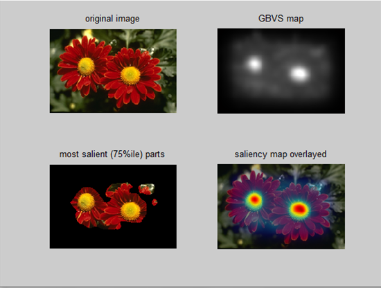 Saliency Maps and their computation with Matlab tools from