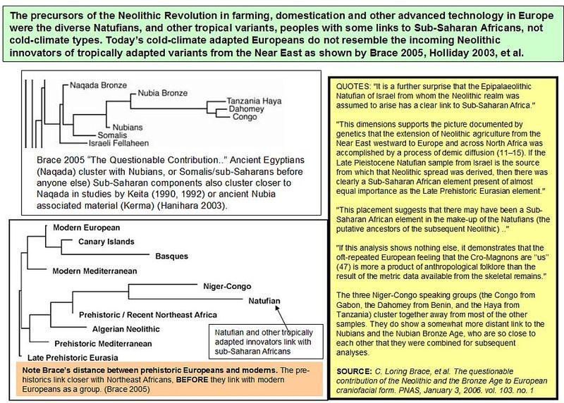 1-Basic Database of Nile Valley Studies | Egyptsearch Reloaded