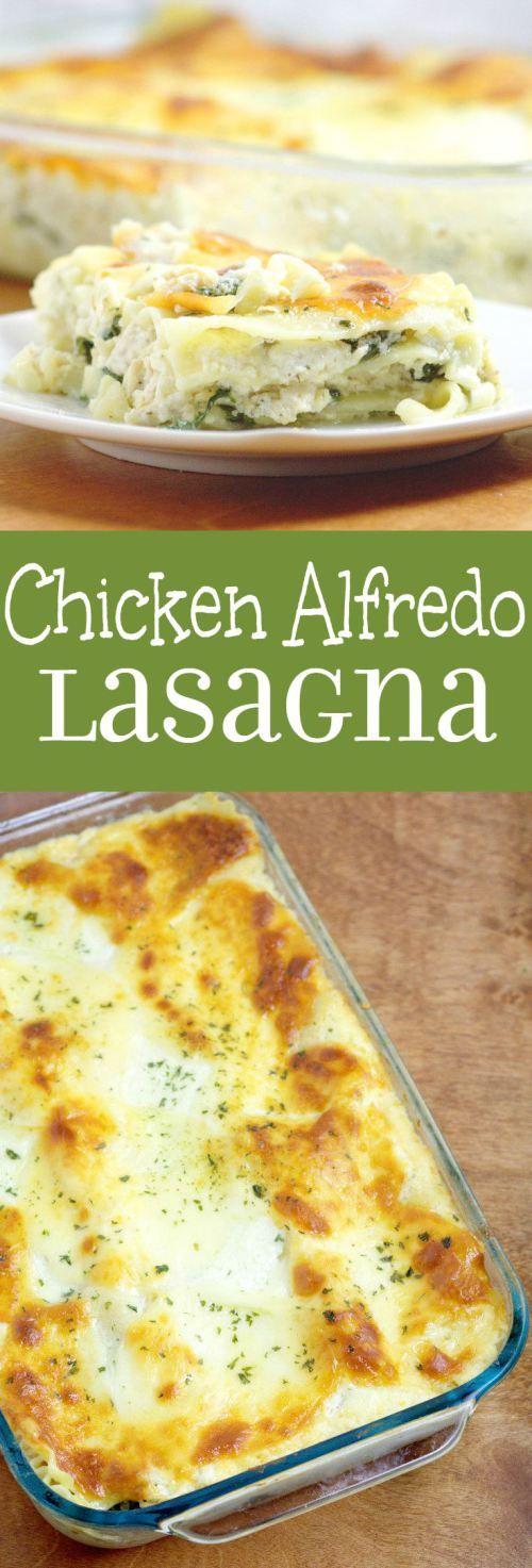 Chicken alfredo Lasagna #chicken #chickenalfredo #alfredo #lasagna #lasagnarecipes #bestlasagna #chickenrecipes