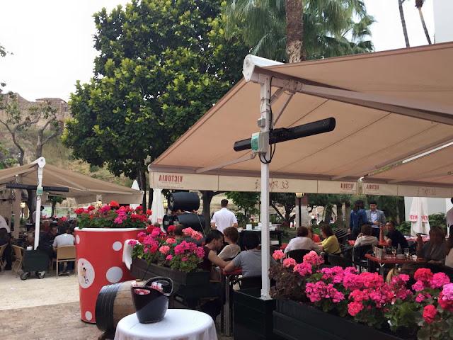 El Pimpi, Malaga'da yemek içmek, Ispanya'da yemek içmek