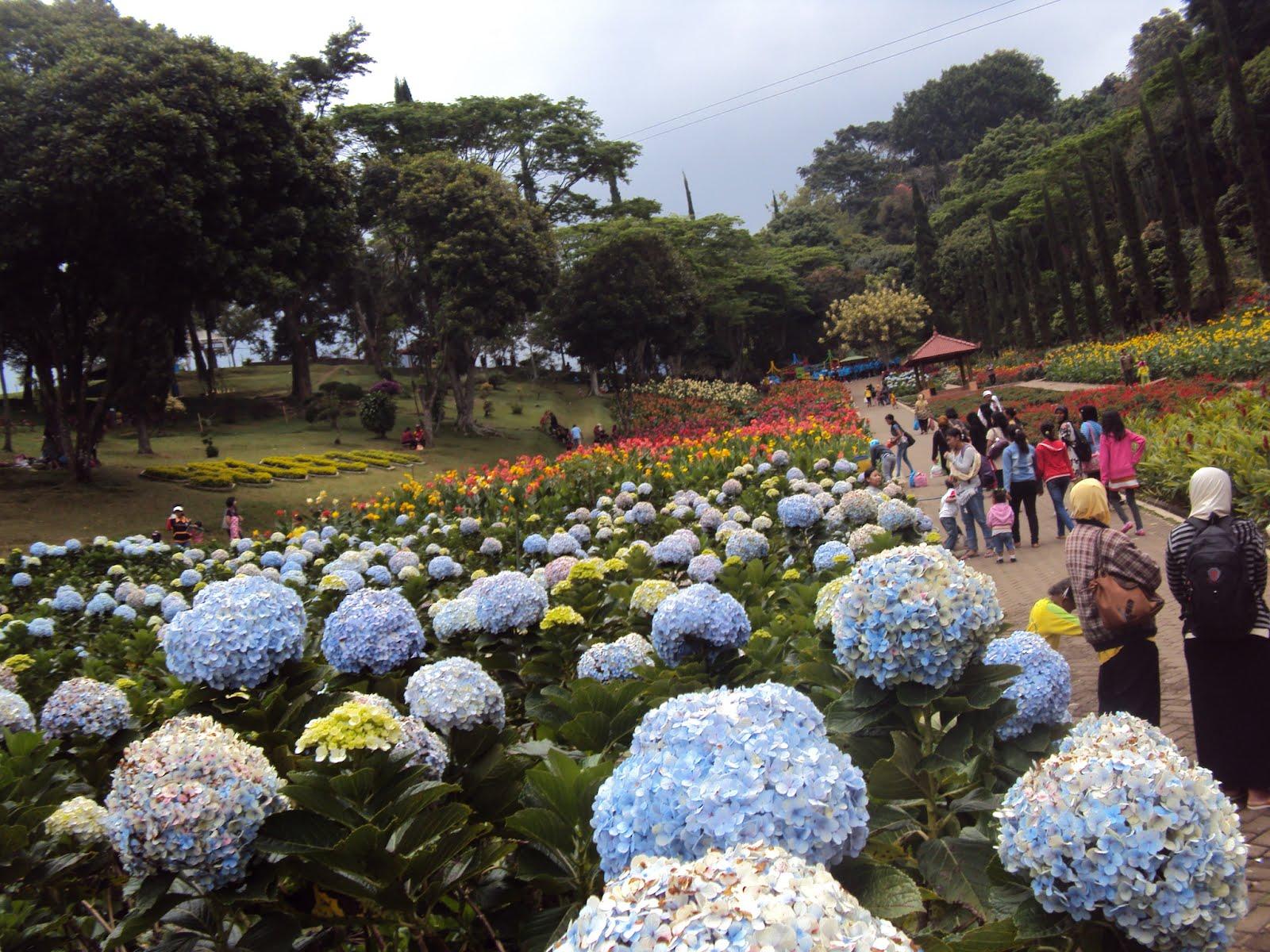 Tempat Wisata Keluarga Terbaik Kota Malang - Artikel Luarbiasa : Kumpulan Artikel Menarik