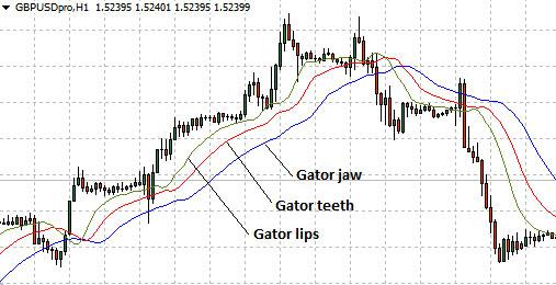 Forex-Alligator-Indicator