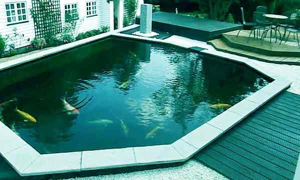 10 Desain Kolam Ikan Hias Depan Rumah Idaman
