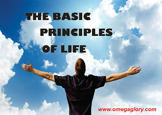 The Abundance Principles Of Life