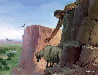 Resultado de imagem para ovelha desgarrada