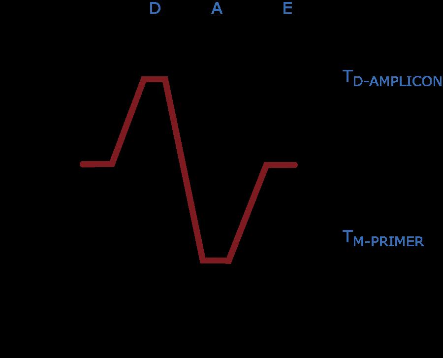 vdu\u0027s blog the mechanics of the polymerase chain reaction (pcr) a PCR Southern Blot a pcr cycle