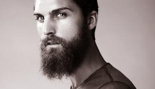 300 Beard: King Leonidas Beard