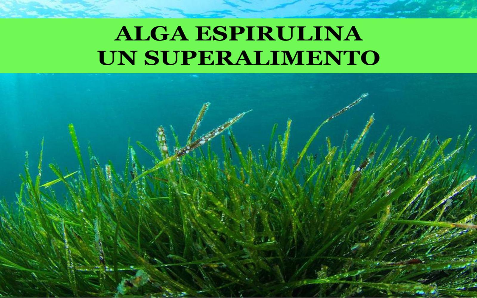 dxn espirulina